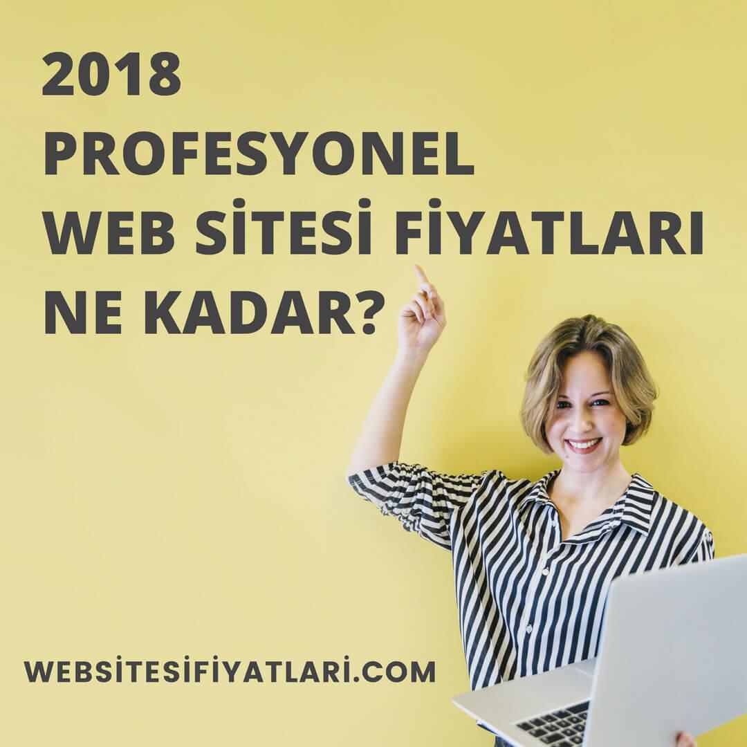 Profesyonel Web Sitesi Fiyatları Ne Kadar?